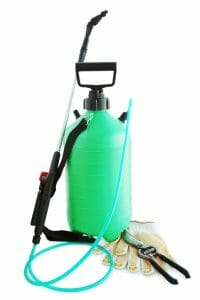 Bug Sprayer rental